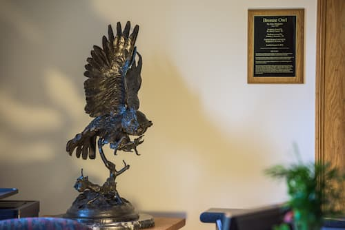 The Bronze Owl
