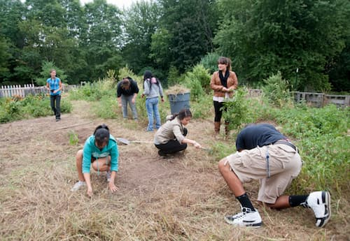 Students tending to dead grass