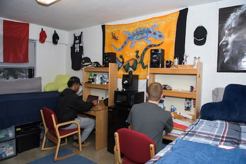 Two students seated at desks in Hickerson dormitory room working on laptops