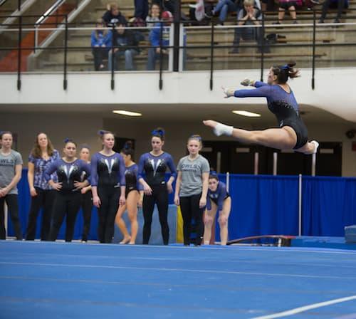 SCSU Gymnastics